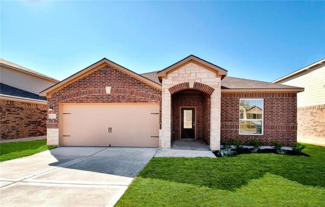 13717 Henry A. Wallace Ln, Manor, TX 78653 (#4700751) :: The Heyl Group at Keller Williams