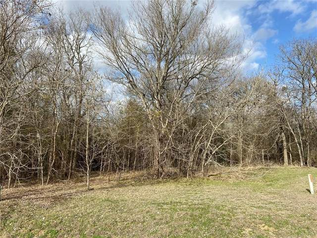 Lot 29 Moccasin Canyon, Cedar Creek, TX 78612 (#4702486) :: Zina & Co. Real Estate