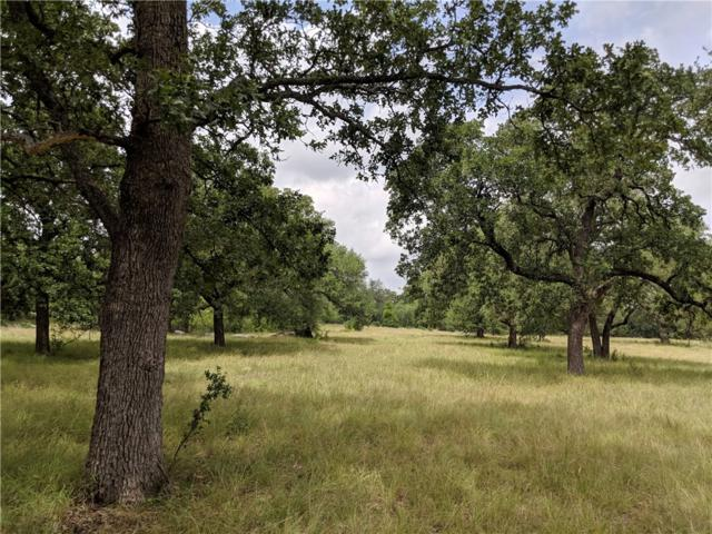 Lot 36 Double Horn Trl, Spicewood, TX 78669 (#4708114) :: Papasan Real Estate Team @ Keller Williams Realty