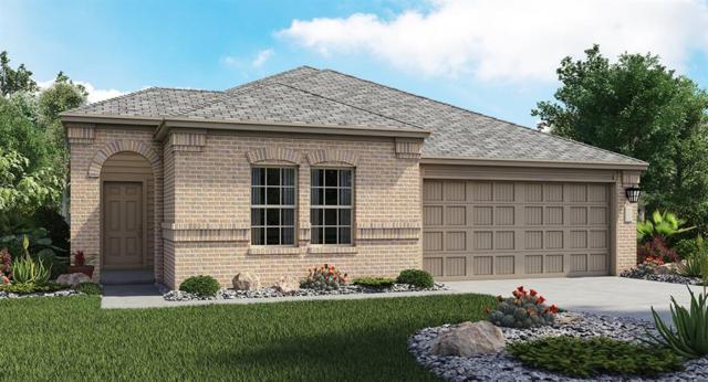 128 Tanzanite Cir, Buda, TX 78610 (#4710084) :: Papasan Real Estate Team @ Keller Williams Realty