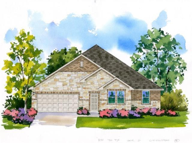 3908 Harbor Point Drive, Pflugerville, TX 78660 (#4716257) :: Ana Luxury Homes