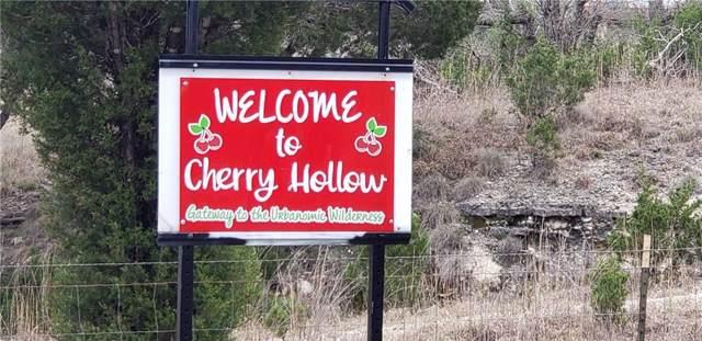 21209 Creekside Dr, Leander, TX 78641 (#4751331) :: The Heyl Group at Keller Williams