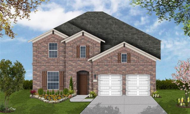 3268 Pablo Cir, Round Rock, TX 78665 (#4807218) :: 12 Points Group