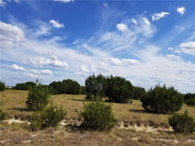 LOT 50 Avila Ln, Briggs, TX 78608 (#4811757) :: Ben Kinney Real Estate Team