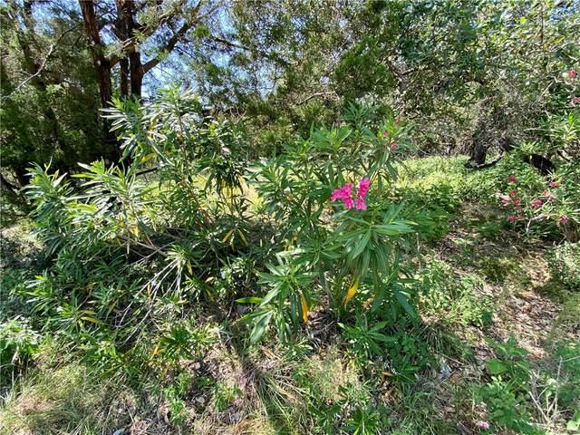 1466/1476 Paradise Dr, Canyon Lake, TX 78133 (#4830805) :: The Heyl Group at Keller Williams