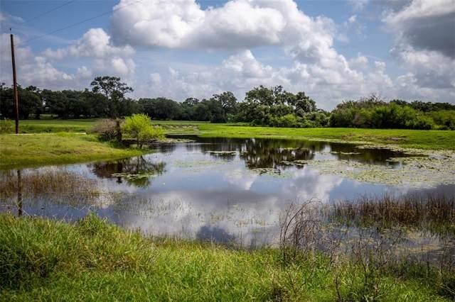 3662 Smith Ranch Rd, Cuero, TX 77954 (#4860858) :: Papasan Real Estate Team @ Keller Williams Realty
