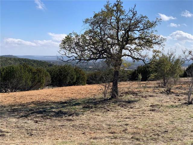 Lot 78 Big Sky, Burnet, TX 78611 (#4879861) :: 12 Points Group