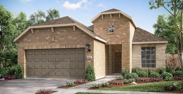 5333 Corelli Falls, Round Rock, TX 78665 (#4884154) :: Papasan Real Estate Team @ Keller Williams Realty