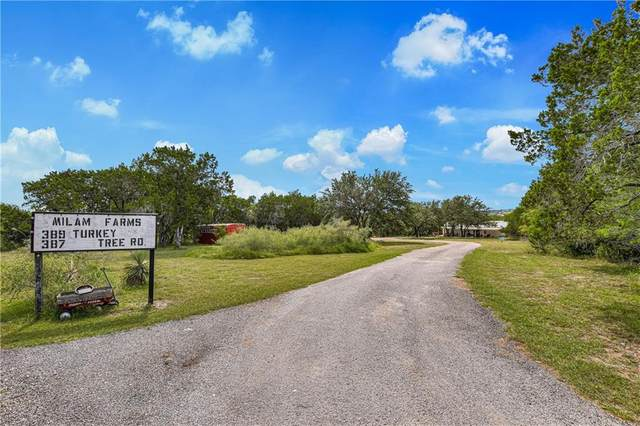 389 Turkey Tree Rd, Spicewood, TX 78669 (#4891326) :: Papasan Real Estate Team @ Keller Williams Realty
