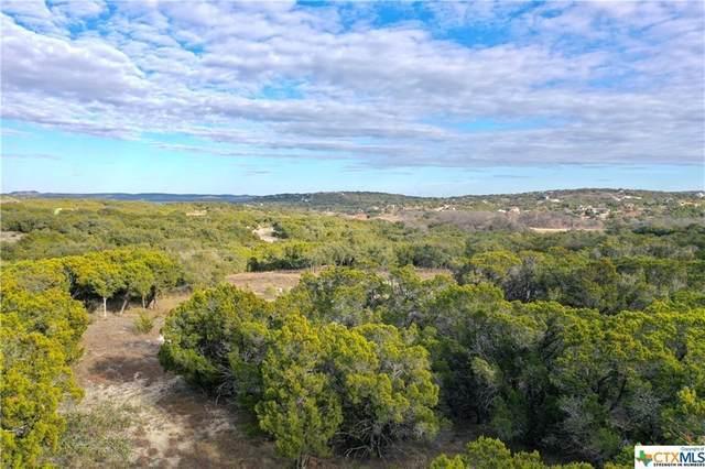 419 Cima Vis, Canyon Lake, TX 78133 (#4913342) :: Realty Executives - Town & Country