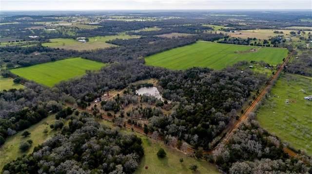 141 Grassyville Rd, Paige, TX 78659 (MLS #4923344) :: Vista Real Estate
