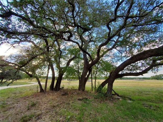 17965 Stillman Valley Rd Tract 2, Florence, TX 76527 (#4964747) :: 12 Points Group