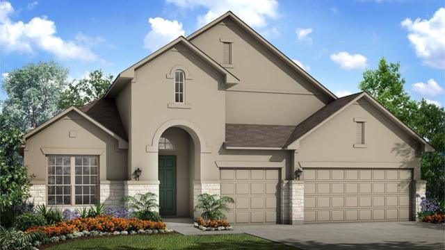 509 Founders Brg, Dripping Springs, TX 78620 (#4966745) :: Ben Kinney Real Estate Team