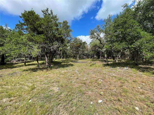 32260 Ranch Road 12 Highway, Dripping Springs, TX 78620 (#4973268) :: Azuri Group   All City Real Estate