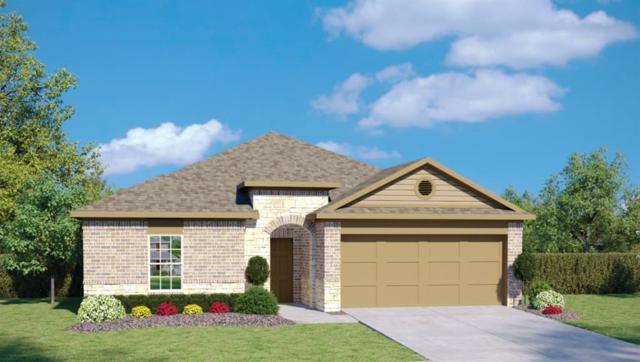 6613 May Shower Dr, Austin, TX 78744 (#4989856) :: Papasan Real Estate Team @ Keller Williams Realty