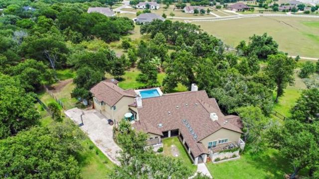 208 Lone Wolf Ct, Dripping Springs, TX 78620 (#4997539) :: Ben Kinney Real Estate Team