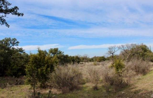 00 Twisted Oak Dr, Marble Falls, TX 78654 (#5000184) :: The Perry Henderson Group at Berkshire Hathaway Texas Realty