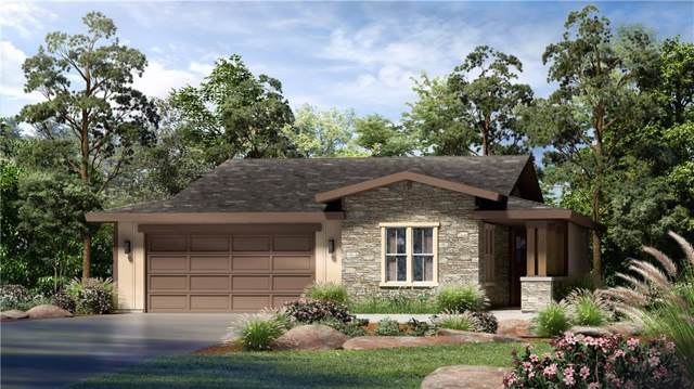 428 Freeing Oak St, San Marcos, TX 78666 (#5008321) :: The Perry Henderson Group at Berkshire Hathaway Texas Realty