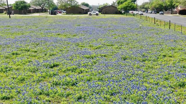 000 August St, Schulenburg, TX 78956 (#5008893) :: Papasan Real Estate Team @ Keller Williams Realty