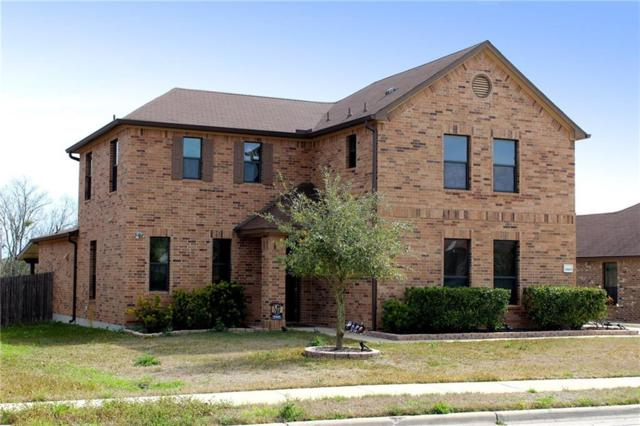 19105 Pencil Cactus Dr, Pflugerville, TX 78660 (#5008957) :: The Heyl Group at Keller Williams