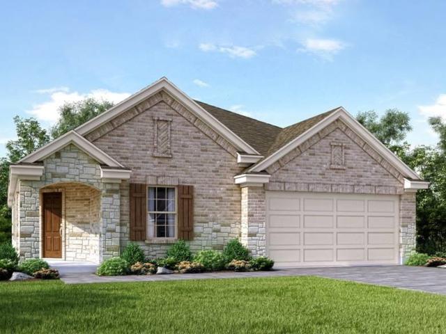 209 Balsam St, Hutto, TX 78634 (#5009982) :: Papasan Real Estate Team @ Keller Williams Realty