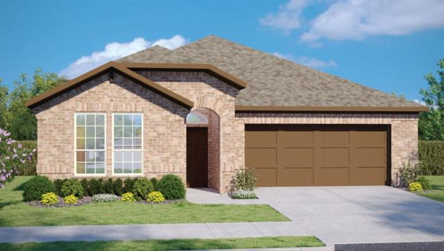 18509 Calasetta Dr, Pflugerville, TX 78660 (#5011276) :: The Gregory Group