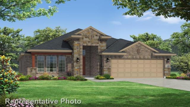 3309 Bianco Ter, Round Rock, TX 78665 (#5017557) :: Watters International