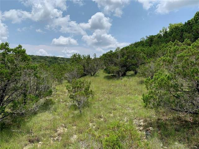 Lot 176-B Suncrest Trl, Bertram, TX 78605 (#5034027) :: Papasan Real Estate Team @ Keller Williams Realty