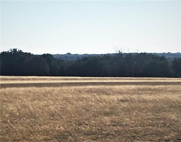 TBD County Road 304, Bertram, TX 78605 (#5041590) :: 12 Points Group