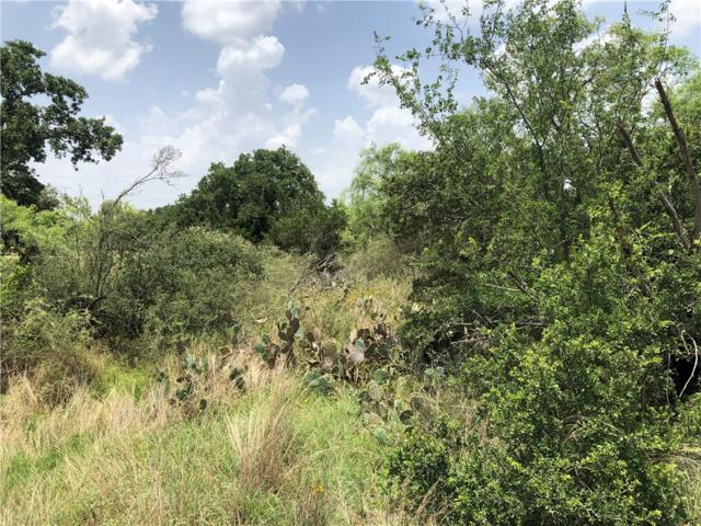 Lots 352-356 Rosehill, Granite Shoals, TX 78654 (#5044814) :: The Perry Henderson Group at Berkshire Hathaway Texas Realty