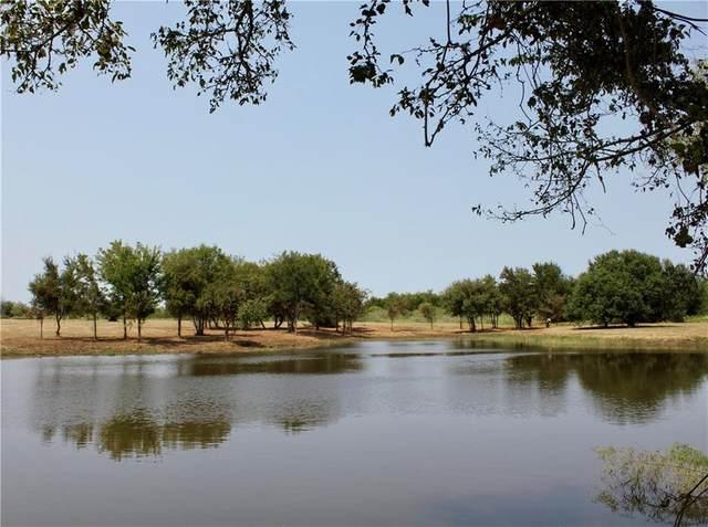 1666 County Road 405, Lexington, TX 78947 (#5054592) :: Papasan Real Estate Team @ Keller Williams Realty