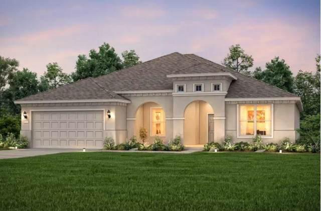 103 Marfa Cv, Georgetown, TX 78633 (#5061161) :: Ana Luxury Homes