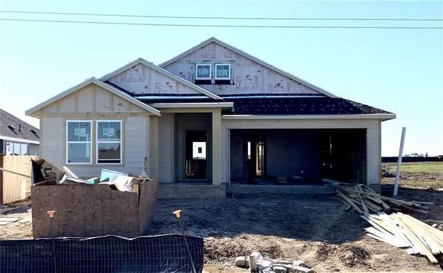 229 Wild Sage, Liberty Hill, TX 78642 (#5072851) :: Zina & Co. Real Estate