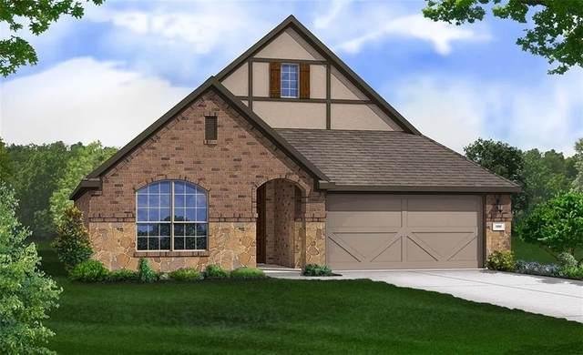 287 Spinnaker Loop, Kyle, TX 78640 (#5076244) :: Papasan Real Estate Team @ Keller Williams Realty