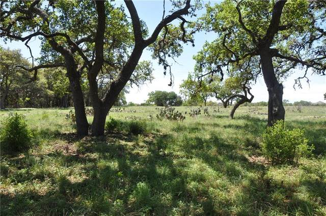 236 Broomweed Cir, Spring Branch, TX 78070 (#5089017) :: Realty Executives - Town & Country