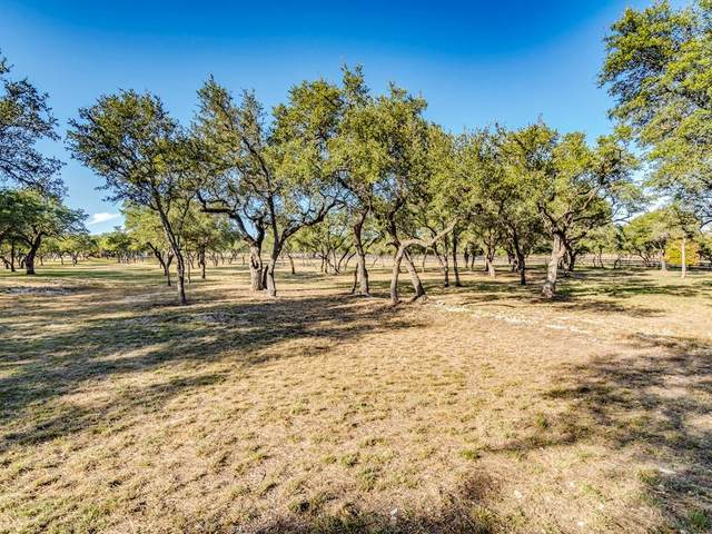 823 Post Oak Dr, Dripping Springs, TX 78620 (#5100576) :: Realty Executives - Town & Country
