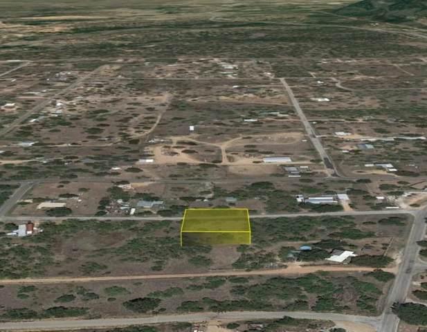 0 Mentone St, Kingsland, TX 78639 (#5108869) :: Ben Kinney Real Estate Team