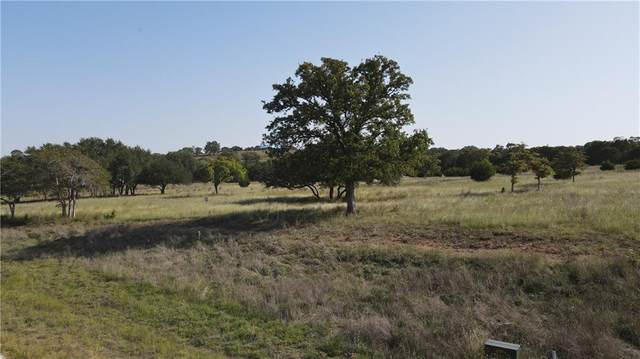 60 Thriving Oak Dr, Fredericksburg, TX 78624 (#5112383) :: Ben Kinney Real Estate Team