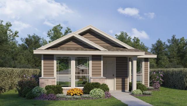2203 Arborside Dr, Austin, TX 78754 (#5117320) :: Ana Luxury Homes