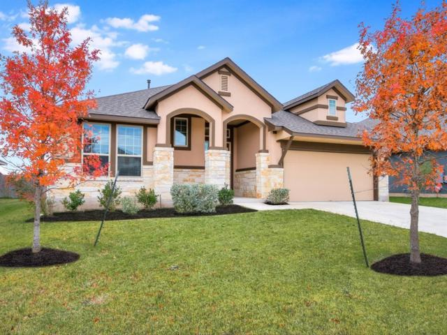 18008 Monarch Butterfly Way, Pflugerville, TX 78660 (#5124078) :: Amanda Ponce Real Estate Team
