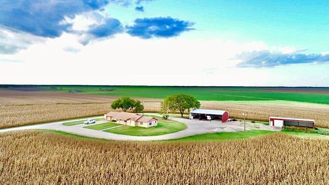 1800 County Road 356 Rd, Granger, TX 76530 (#5145340) :: Papasan Real Estate Team @ Keller Williams Realty