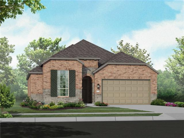 149 Emerald Garden Xrd, San Marcos, TX 78666 (#5146936) :: Amanda Ponce Real Estate Team