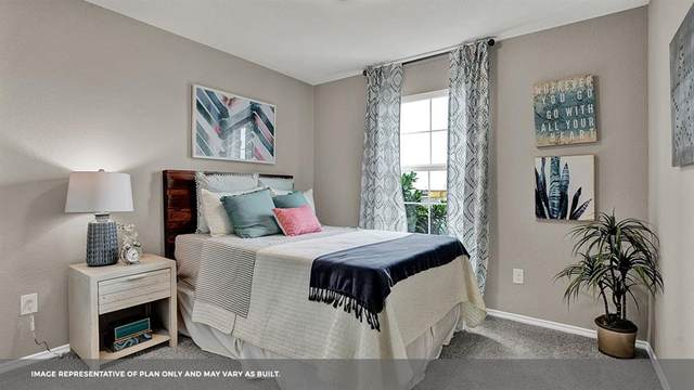 220 Spotted Bass, San Marcos, TX 78666 (#5155159) :: Front Real Estate Co.