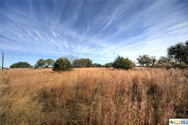 7120 County Road 200A, Burnet, TX 78611 (#5175502) :: Realty Executives - Town & Country