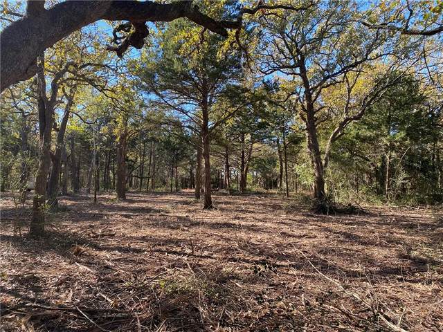 TBD Fm 1697, Ledbetter, TX 78946 (#5211800) :: The Perry Henderson Group at Berkshire Hathaway Texas Realty