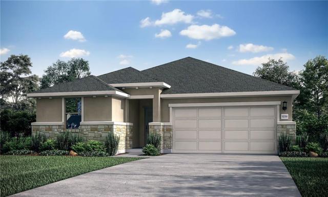 1328 Eagle Ray Street, Leander, TX 78641 (#5216510) :: Watters International