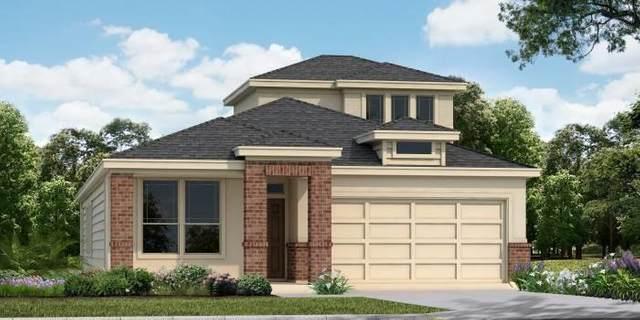 737 Willowbrook St, New Braunfels, TX 78130 (MLS #5221948) :: Brautigan Realty