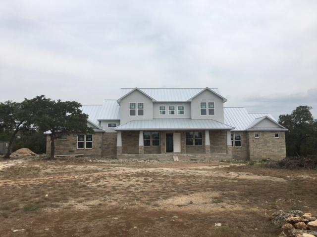 184 Napa Ct, Driftwood, TX 78619 (#5228995) :: The Perry Henderson Group at Berkshire Hathaway Texas Realty