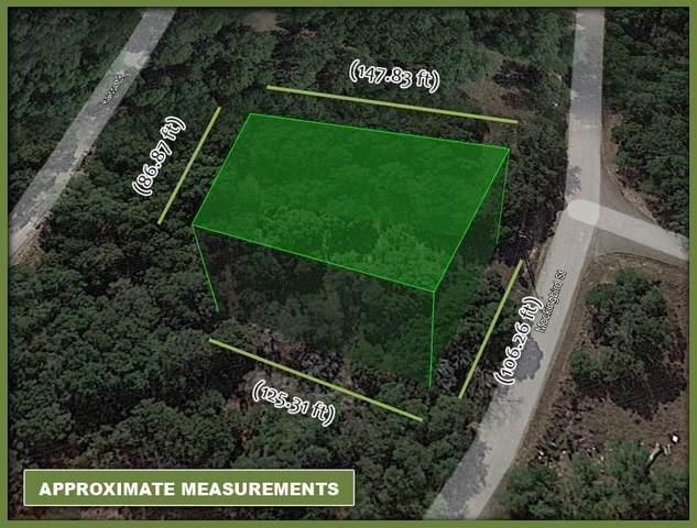 21900 Mockingbird St, Lago Vista, TX 78645 (#5236806) :: Papasan Real Estate Team @ Keller Williams Realty