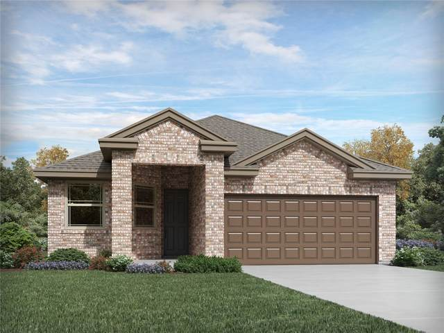 220 Moon Beam Dr, Kyle, TX 78640 (#5257187) :: The Perry Henderson Group at Berkshire Hathaway Texas Realty